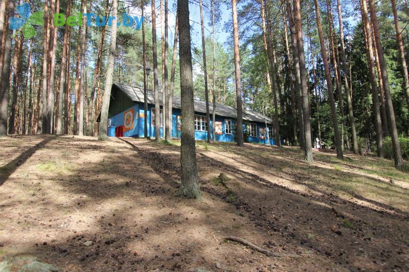 Адпачынак у Беларусі - база адпачынку Лётцы - Тэрыторыя і прырода