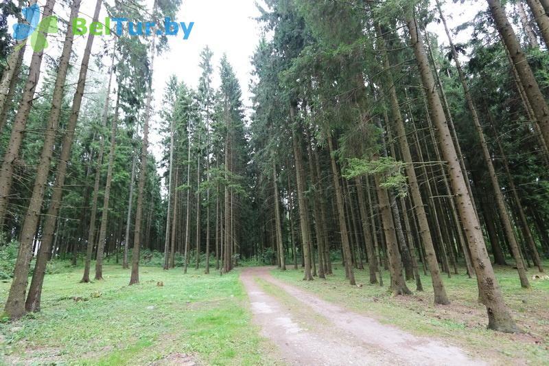Отдых в Белоруссии Беларуси - дом отдыха Эридан - Территория и природа