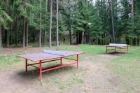 оздоровительный комплекс Ислочь-Парк - Теннис настольный