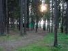база отдыха Сосновый берег - Площадка для палаток