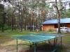 база отдыха Комарово - Теннис настольный