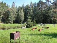 усадьба Викинг - Площадка для шашлыков
