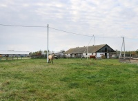 farmstead Slutsky Straus