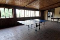 база отдыха Березовый двор - Теннис настольный