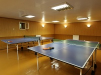 база отдыха Милоград - Теннис настольный